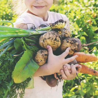 alimentos bio u organicos